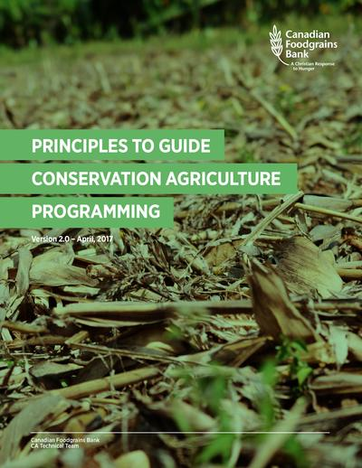 Principles to guide conservation agriculture programming  0