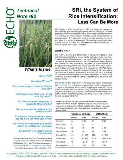 Tn 82 sri the system of rice intensification less can be more thumbnail 0