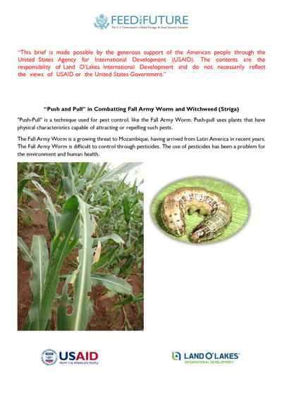 Push and pull in combating fall army worm and witchweed striga  0