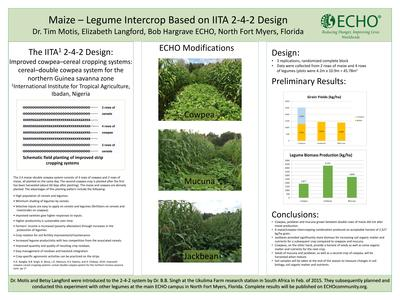 Ern 7 maize legume intercrop based on iita 2 4 2 design thumbnail 0